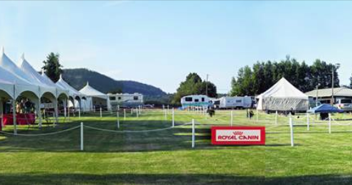 VCKC Spring Dog Show - Whats On Digest