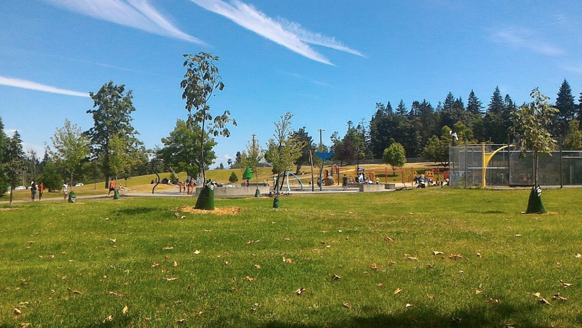 Public Parks and Fields