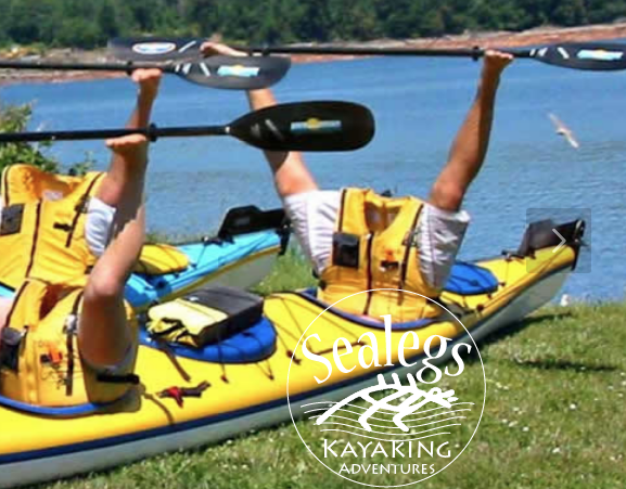 Kayaking with Sealegs